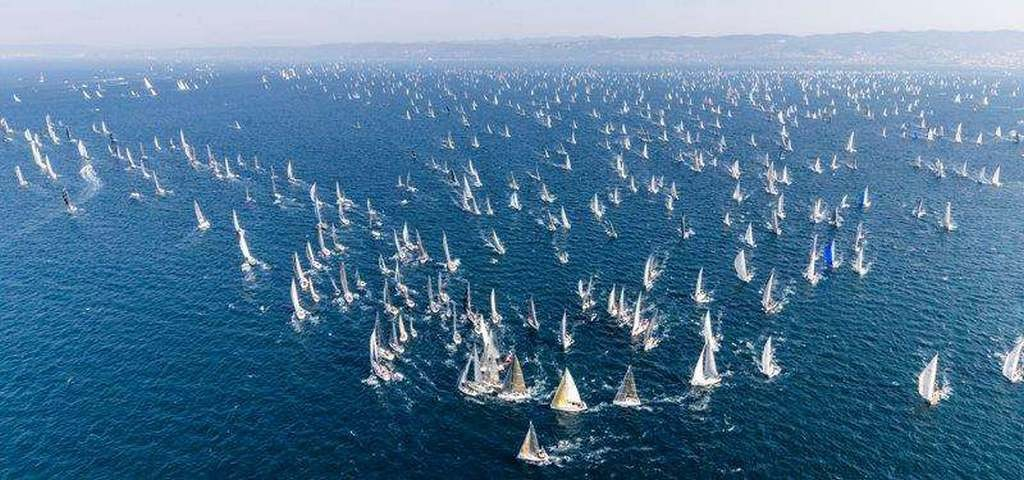 Barcolana-51 has limited the number of participants